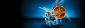 overview-banner-wasp-bg - Copy